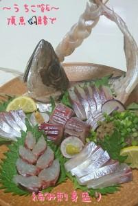 頂魚鯵で🎣編み刺身盛り~なめろう~