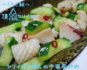頂ヤリイカで🎣ヤリイカと胡瓜の中華風炒め
