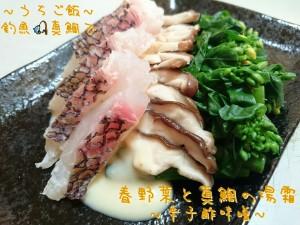 釣魚真鯛で🎣春野菜と真鯛の湯霜~辛子酢味噌~
