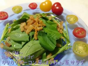 釣魚クロアナゴで🎣カリカリベーコン風ほうれん草サラダ