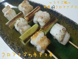 釣魚クロアナゴで🎣クロアナゴのネギマ串