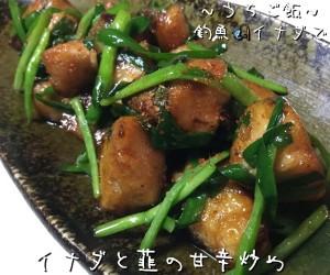 釣魚イナダで🎣イナダと韮の甘辛炒め