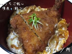 頂魚鯵で🎣鯵カツ丼