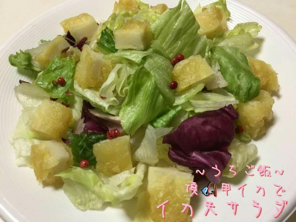 頂甲イカで🎣イカ天サラダ