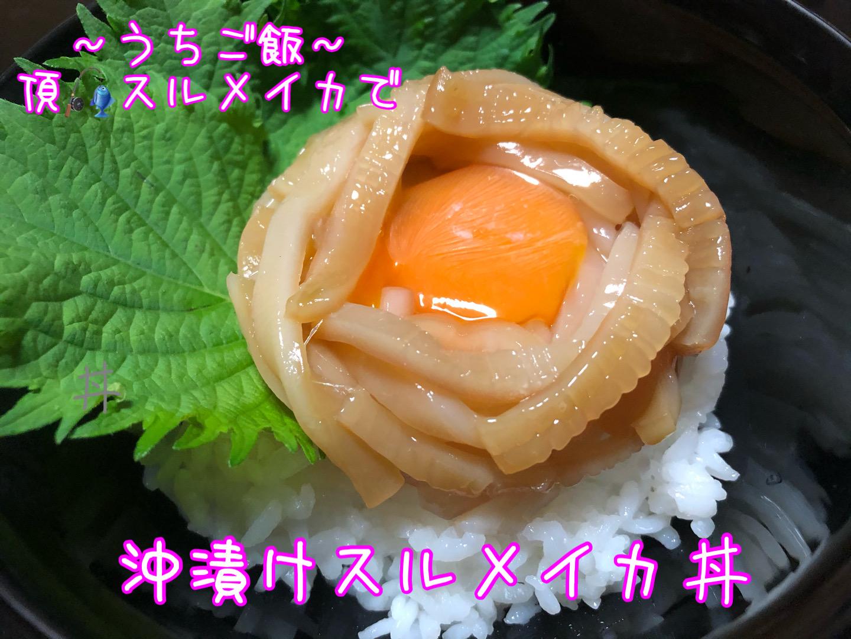 頂スルメイカで🎣 沖漬けスルメイカ丼